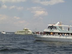 Off the shore party boats.