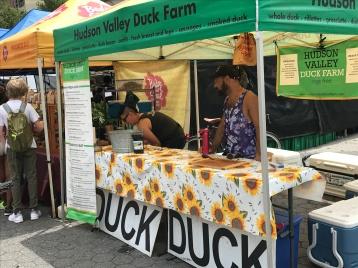 Hudson Valley Duck