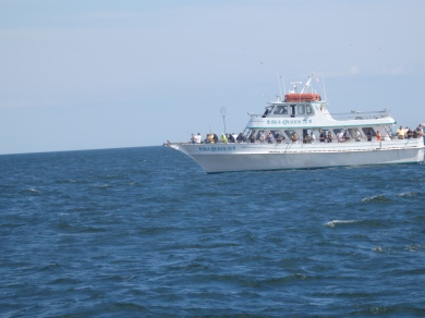 on the open sea.
