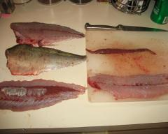 cleaned bluefish fillets
