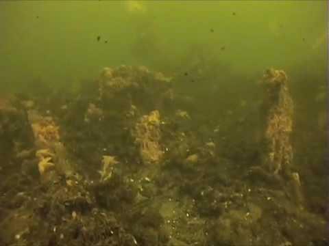 up underwater