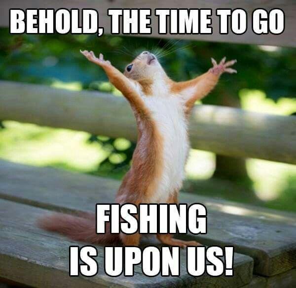 fishing meme1