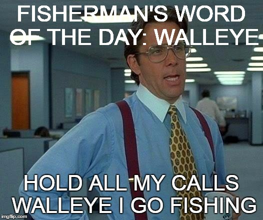 fishing meme3