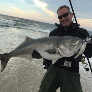record bluefish