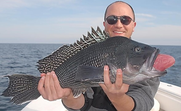 record sea bass