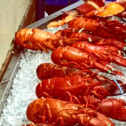 lobster nicks